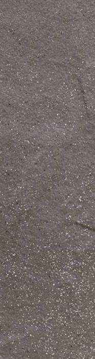 TAURUS GRYS - фото 1