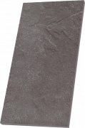 TAURUS GRYS