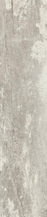 TROPHY BIANCO - фото 1