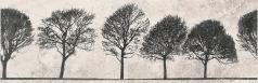 WILLOW SKY INSERTO TREE