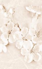 SOFI INSERTO FLOWER