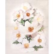 RENSORIA PANNO FLOWER