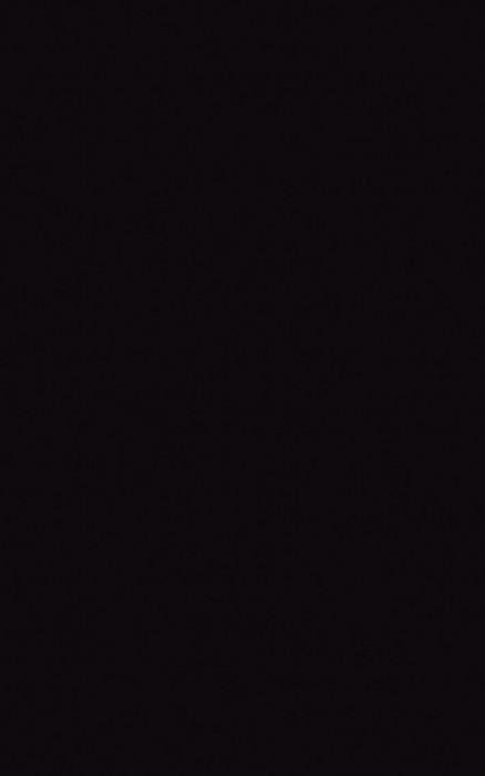 VEO NERO - фото 1