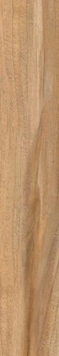 SOFTWOOD BEIGE - фото 1
